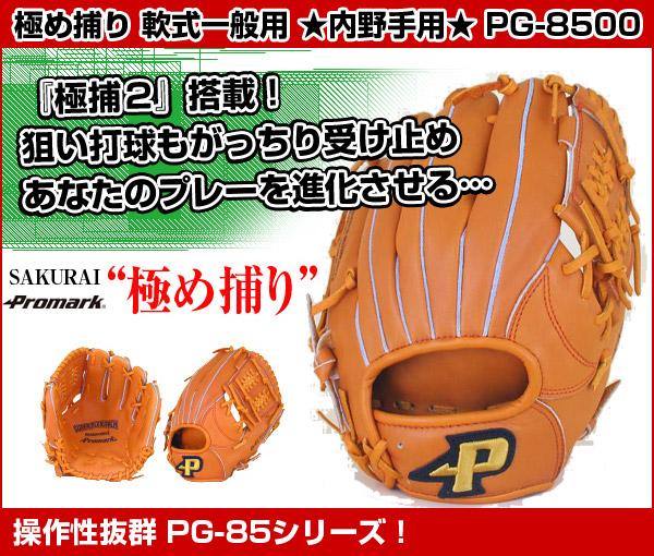pg-8500-1