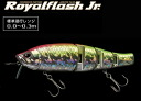 ( Evergreen ) Evergreen Royal Flash Jr
