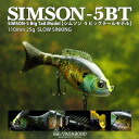 Vagabond (VAGABOND) SIMM loss 5 big tail (SIMSON-5BT)