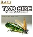 Raid Japan (RAIDJAPAN) two side (TWOSIDE)