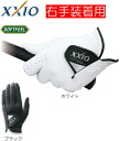 Dunlop xxio golf glove hand for ■ right hand fitted for ■ GGG-X004R [DUNLOP XXIO] fs3gm
