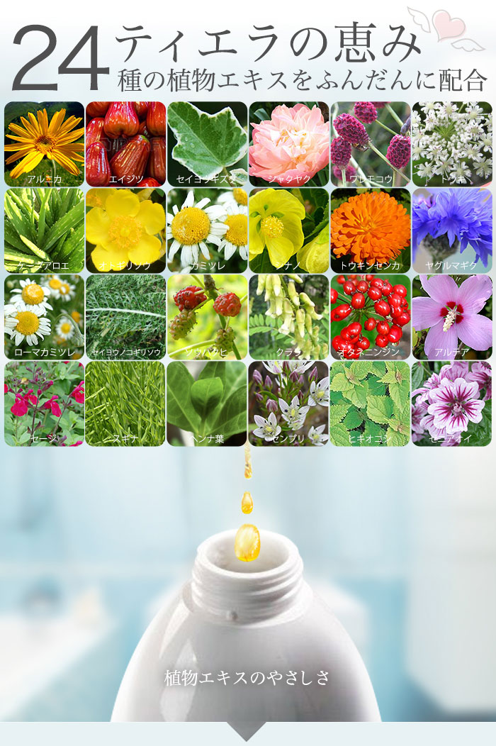 24種類の植物エキスをの恵みをふんだんに配合