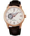 2014-11-new Orient star automatic mens watch WZ0211DA