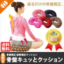Rakuten ranking Prize! new colors pink dot appeared! [Sit Katsuno expression only in pelvic cue and cushion] pelvic health cushion
