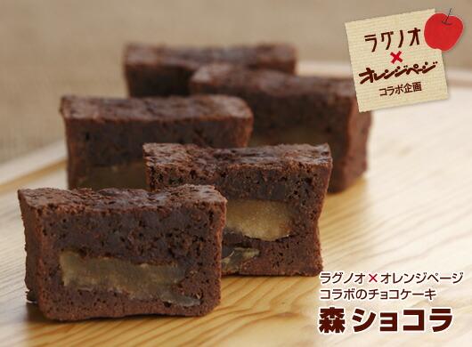 ラグノオ×オレンジページコラボのチョコケーキ 森ショコラ