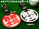 Nametag, such as for golf Caddy bag nameplate seals