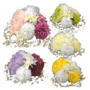 Reviews listed at 5806 Yen Peony ornament 8 points set coming of age ceremony kimono wedding ornament corsage graduation hakama yukata 七五三 dress kimono kimono hair accessories flowers