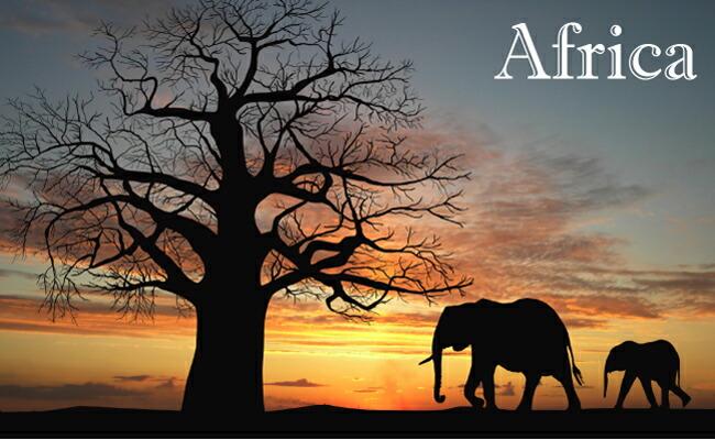 アフリカ大陸ペンダント