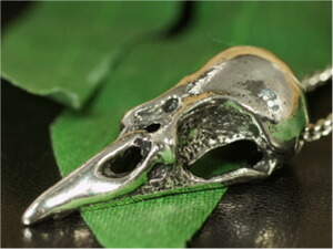 クロウスカル(カラス頭蓋骨)