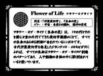 フラワーオブライフ(生命の花)意味
