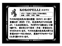 ココペリ説明カード