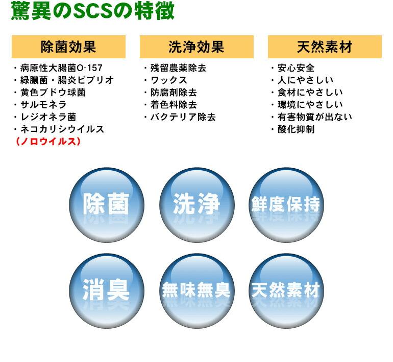 驚異のSCSの特徴