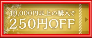 250円OFFクーポン!