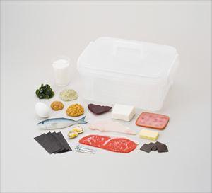 食品模型マグネットタイプ(体の組織を作る) 50981 P12Sep14