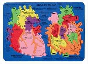 EVA心臓パズル 95037 P12Sep14