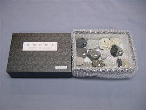 実習用堆積岩標本 10種 98658 P12Sep14