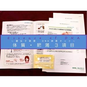 遺伝子検査 DNA検査キット 体質・肥満3項目 P12Sep14