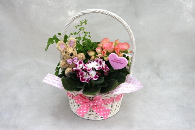 鉢花アレンジバスケット −M トピアリー 母の日 プレゼント