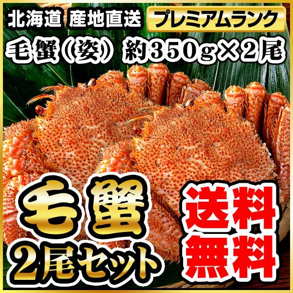 毛ガニ(姿) 約350g×2 (2尾) ボイル冷凍(代引き不可) P12Sep14