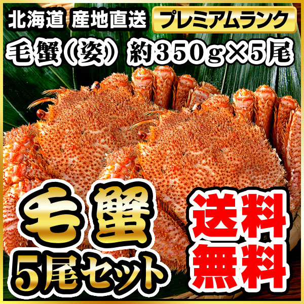毛ガニ(姿) 約350g×5 (5尾) ボイル冷凍(代引き不可) P12Sep14