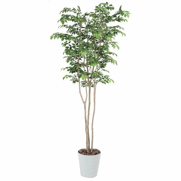 アートフラワー 人工観葉植物 光触媒 光の楽園 アメニティテーブル (代引き不可) P12Sep14