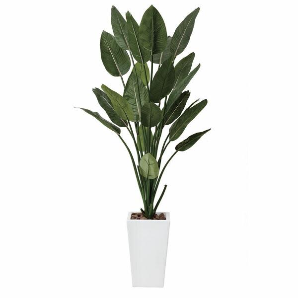 アートフラワー 人工観葉植物 光触媒 光の楽園 ストレチアW1.6 (代引き不可) P12Sep14