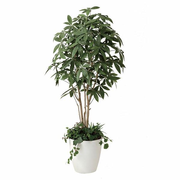 アートフラワー 人工観葉植物 光触媒 光の楽園 パキラ1.8植栽付 (代引き不可) P12Sep14