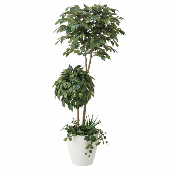 アートフラワー 人工観葉植物 光触媒 光の楽園 ベンジャミンダブルフェイス植栽付1.8 (代引き不可) P12Sep14