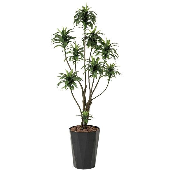 アートフラワー 人工観葉植物 光触媒 光の楽園 ドラセナコンパクタ1.6 (代引き不可) P12Sep14