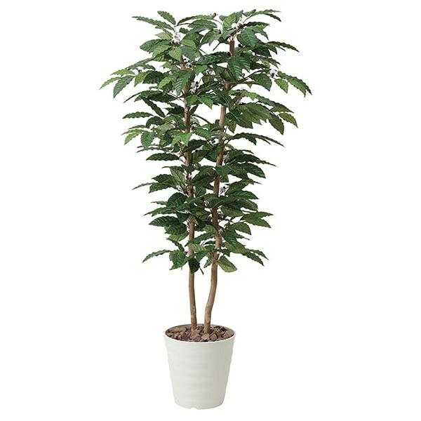 アートフラワー 人工観葉植物 光触媒 光の楽園 コ-ヒ-1.6 (代引き不可) P12Sep14
