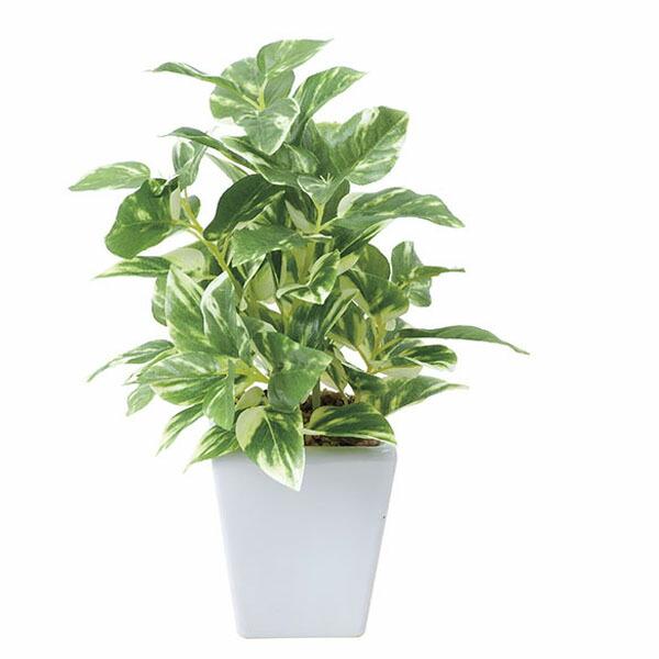 アートフラワー 人工観葉植物 光触媒 光の楽園 ポトスポット (代引き不可) P12Sep14