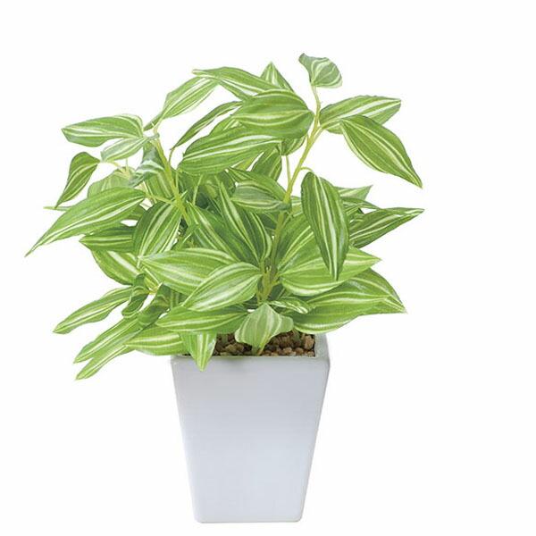 アートフラワー 人工観葉植物 光触媒 光の楽園 トラディスカンティアポット (代引き不可) P12Sep14