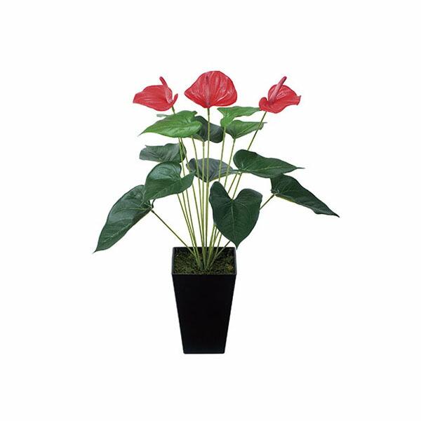 アートフラワー 人工観葉植物 光触媒 光の楽園 アンスリュ-ム (代引き不可) P12Sep14
