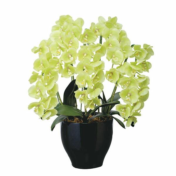 アートフラワー 人工観葉植物 光触媒 光の楽園 フレッシュ胡蝶蘭5本立G (代引き不可) P12Sep14