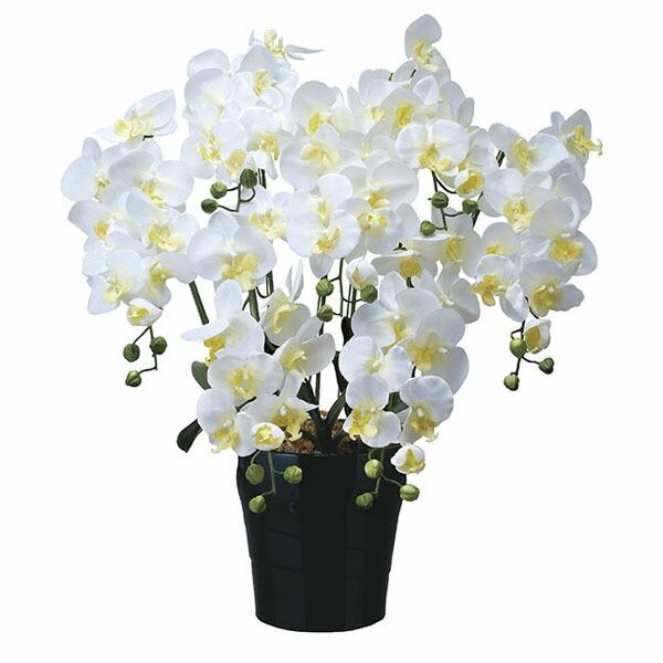 アートフラワー 人工観葉植物 光触媒 光の楽園 キング胡蝶蘭7本立W (代引き不可) P12Sep14