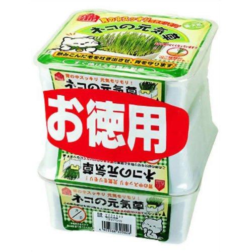 ヤマヒサ ネコの元気草 3コパック ヤマヒサペットケア事業部 P12Sep14