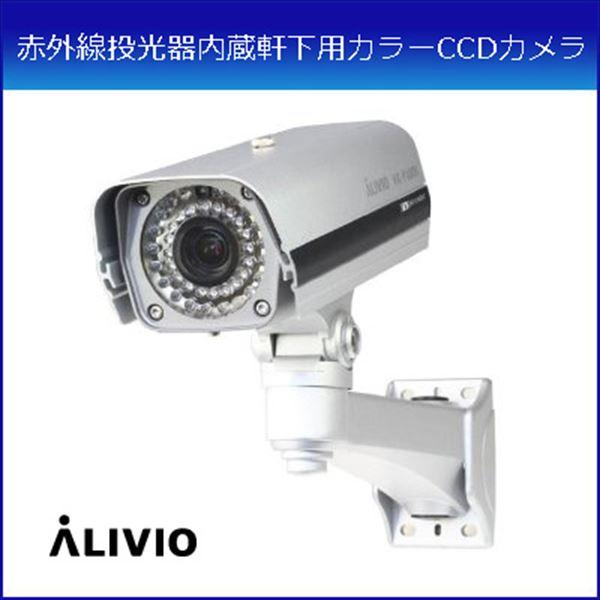 コロナ電業 赤外線投光器内蔵軒下用カラーCCDカメラ VK-P400X (代引き不可) P12Sep14