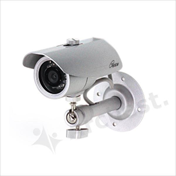 コロナ電業 ダミーカメラ TD-855 (代引き不可) P12Sep14
