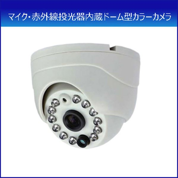 コロナ電業 カラードームカメラ&ナイトカメラ ケーブルセット 「TR-2500DI」 (代引き不可) P12Sep14