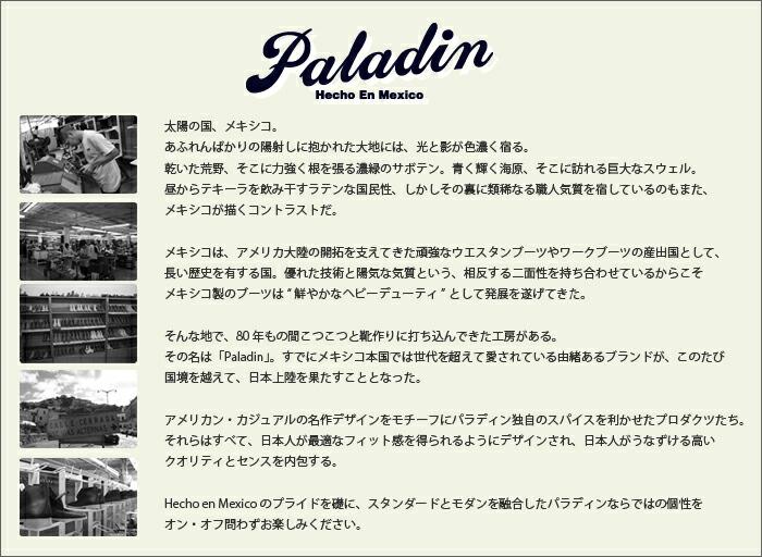 Paladin(�ѥ�ǥ���)