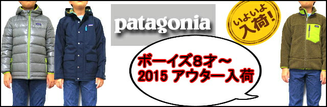 pata-b640-1.jpg