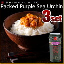 Purple sea urchin*3