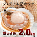 Hokkaido field with production live scallop premium size 6 pieces 2.0 kg BBQ /BBQ Hokkaido souvenirs order mother's day gifts giveaway
