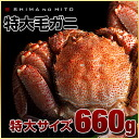 It is attractive that 660 g of *1 downy hair queen crab taste in Russia is thick