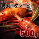 Russia produced spot prawns 500 g once speed freeze 1 1 tail on oversized filling!! Botan shrimp Hokkaido gift request Midyear gift Midyear Gift Giveaway