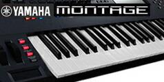 MONTAGE6