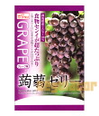 Konnyaku jelly grape flavor 12 pieces