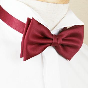 红色领结叫 aka 蝴蝶玩具和蝴蝶结领结,正式的西装和礼服的协调在一个