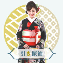 お引きずり(ひき振袖)・紋服フルセット