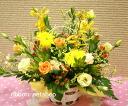 계절의 꽃 꽃꽂이 (꽃) (비타민 컬러) FL-MD-75